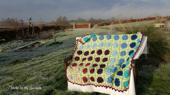 our final ta-dah! with the frosty garden as a back-drop