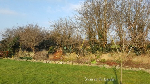 a small stone wall at the front of the ditch wall garden
