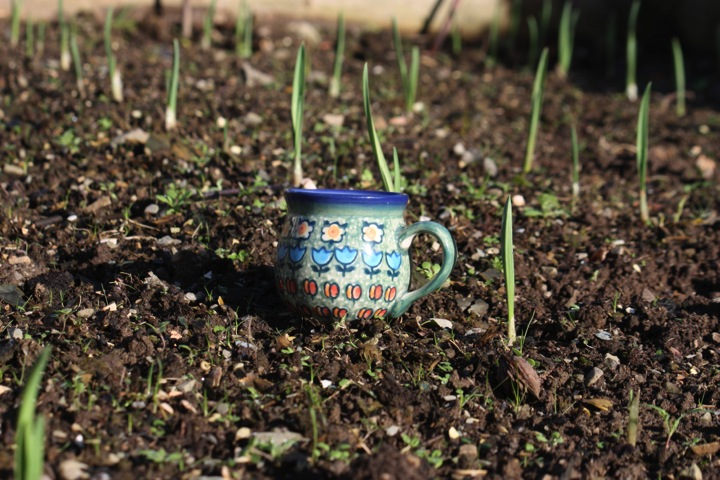 Home grown garlic and Polish Pottery