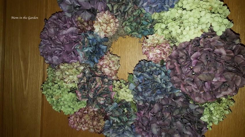 dried hydrangea wreath hanging on door