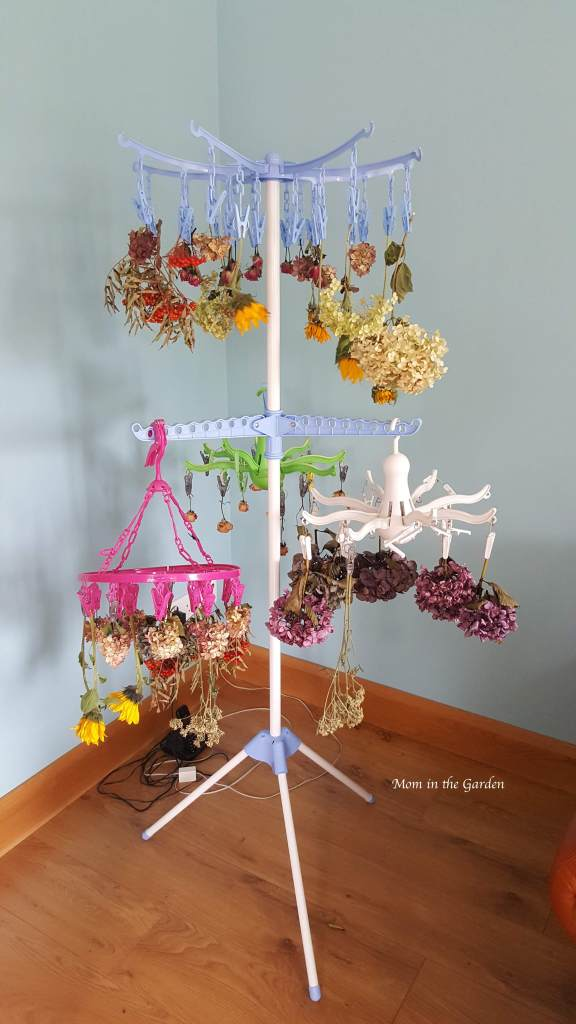 drying rack filled with flowers