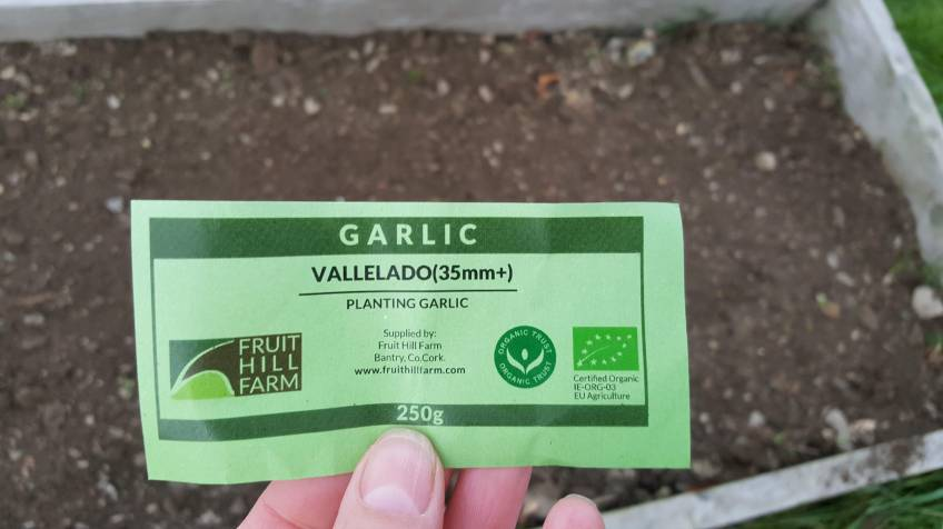 organic Vallelado Garlic label