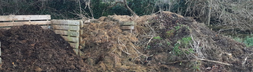 broken down compost and unbroken down compost