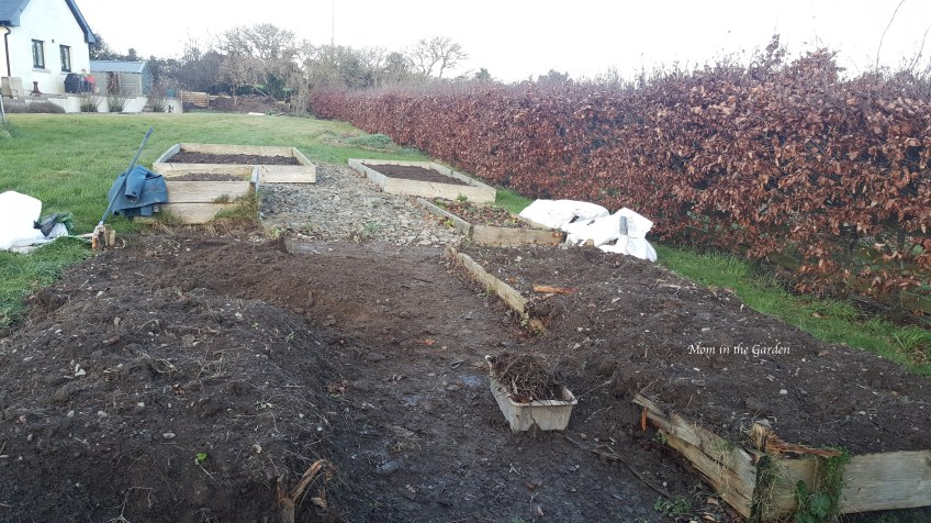 garden beds of soil