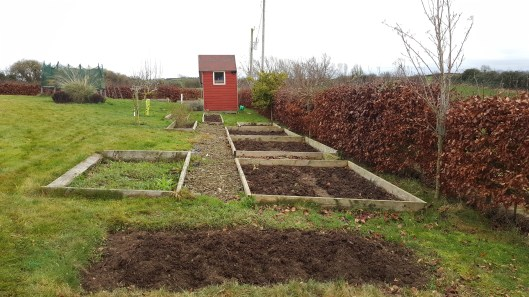 gardening beds weeded and covered in compost