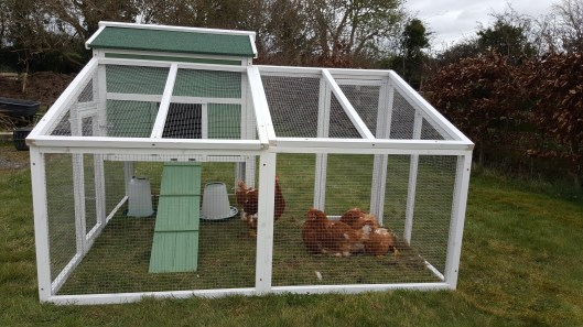 chicken coop outside view