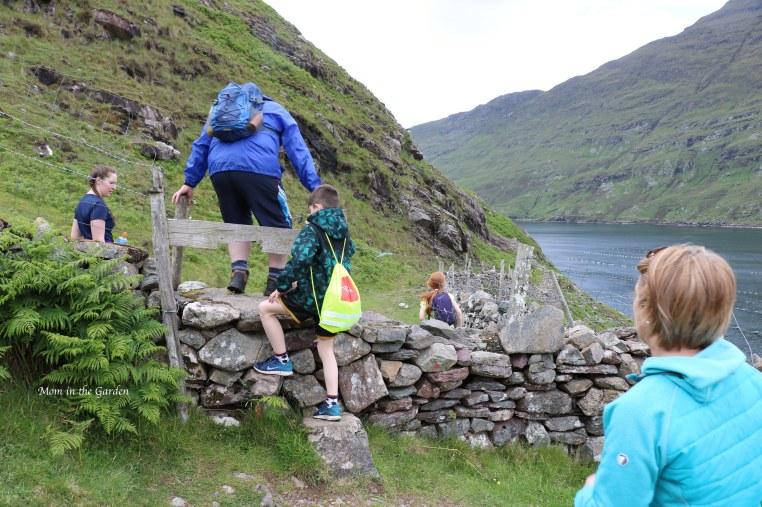 climbing a gate along the path