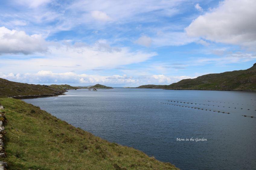 Killary harbour view
