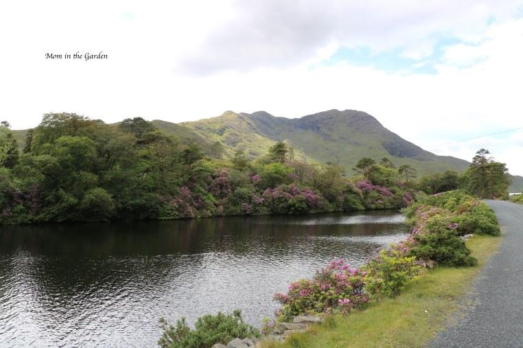 lake and mountain view