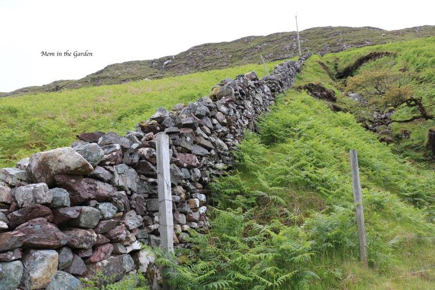 stone wall along Killary harbour walk
