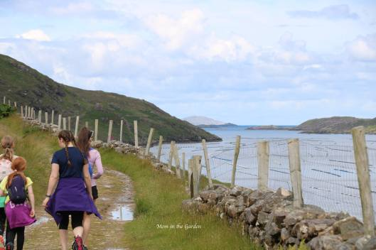 view of Killary Fjord from hiking path