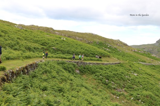 hiking along Killary habour