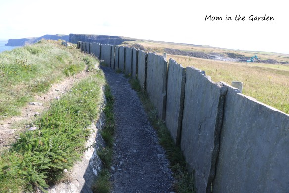 Cliffs of Moher Stone Wall path