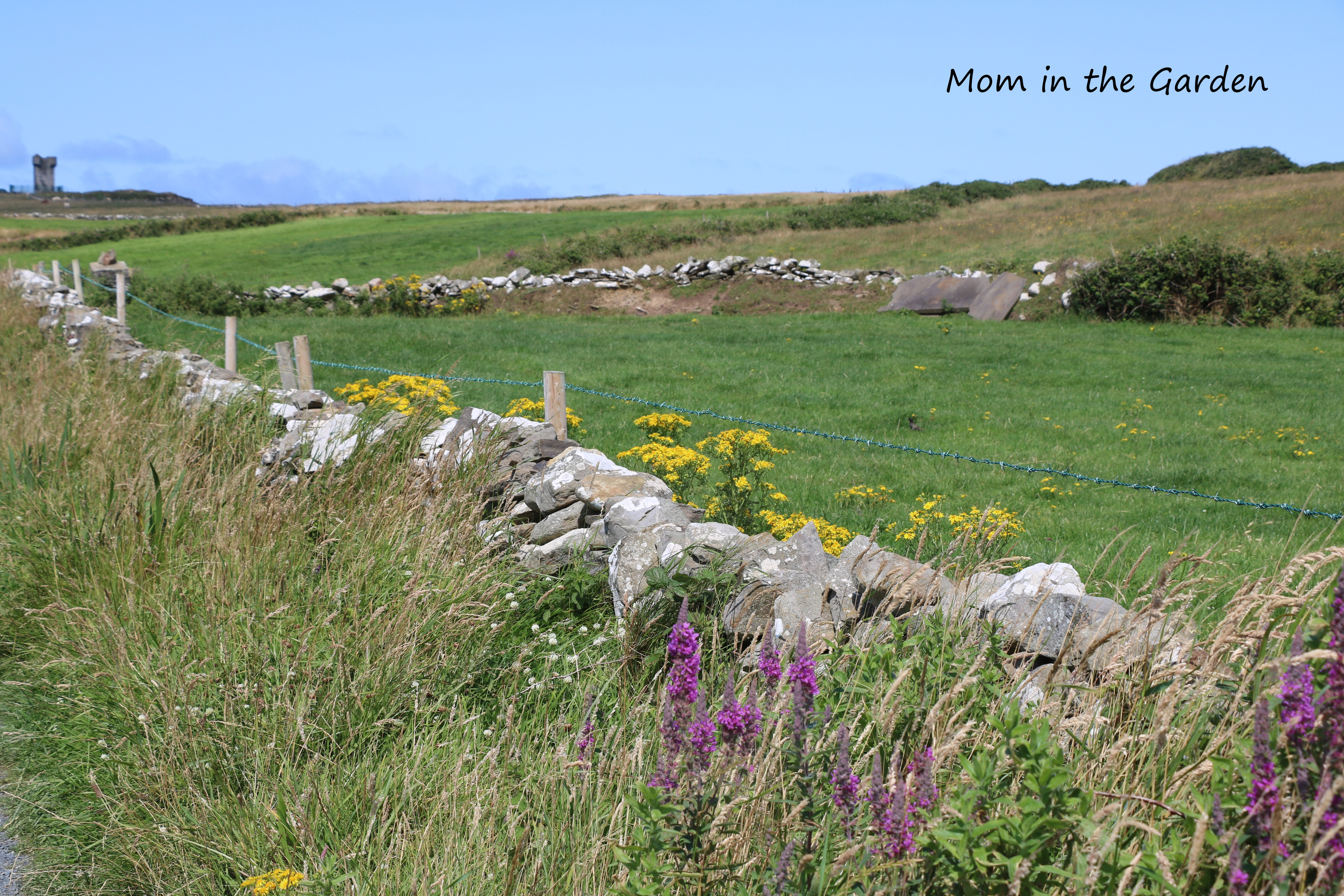 first tower country road flowers and stone wall