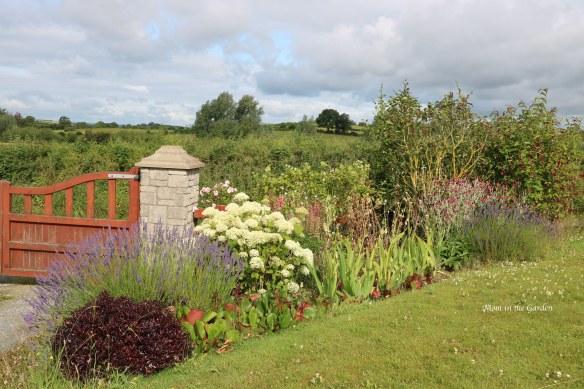 Front Gate Garden July 18
