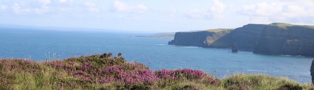 Heather and views of cliffs