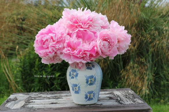 Peony bouquet on table July 9