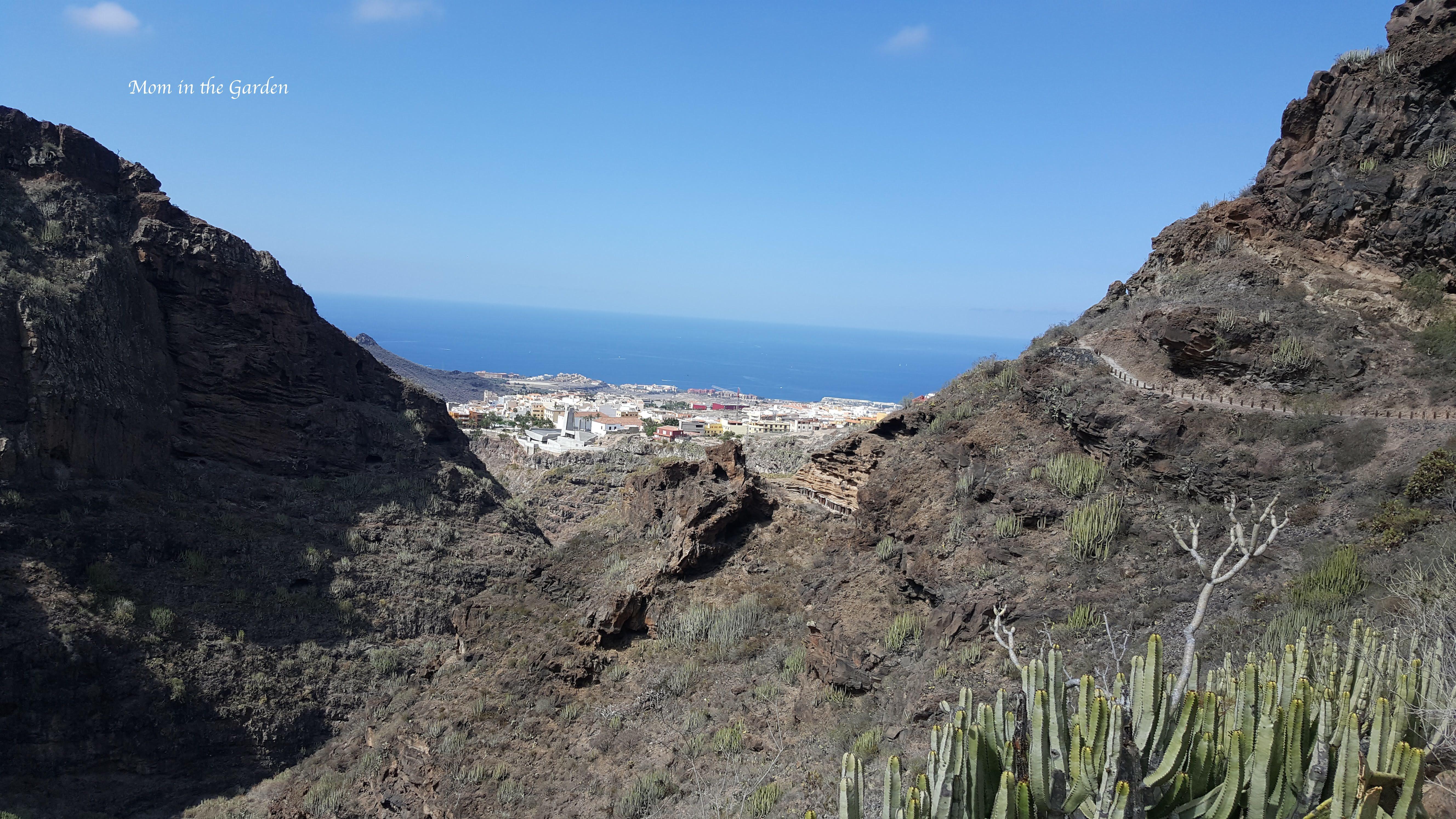 Barranco del Infierno sea view with cactus