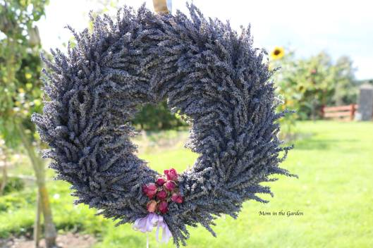 Completed Lavender Wreath in garden