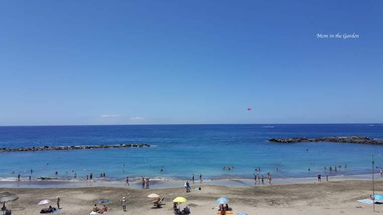 Playa del Duque beach on Costa Adeje in southern Tenerife