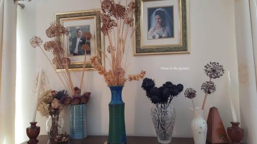 vases of dried flowers