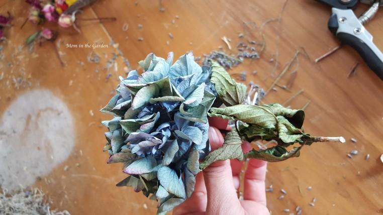 blue hydrangea for wreath