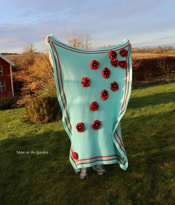 Blue Blanket with poppies shaded + sun