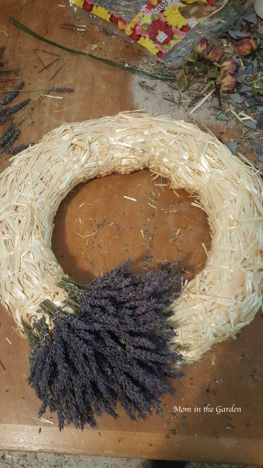 Lavender wreath in the making - first round