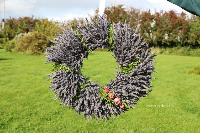 Lavender wreath + Rosemary + roses outside