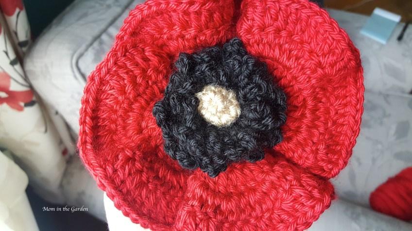 Poppy flower up close