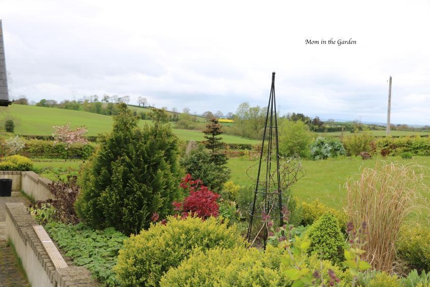 Front Garden View April 26