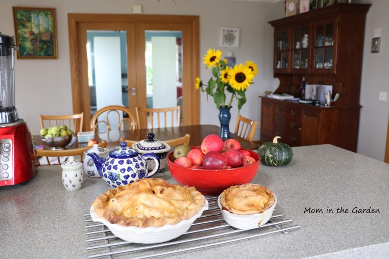 October apple pie and sunflowers
