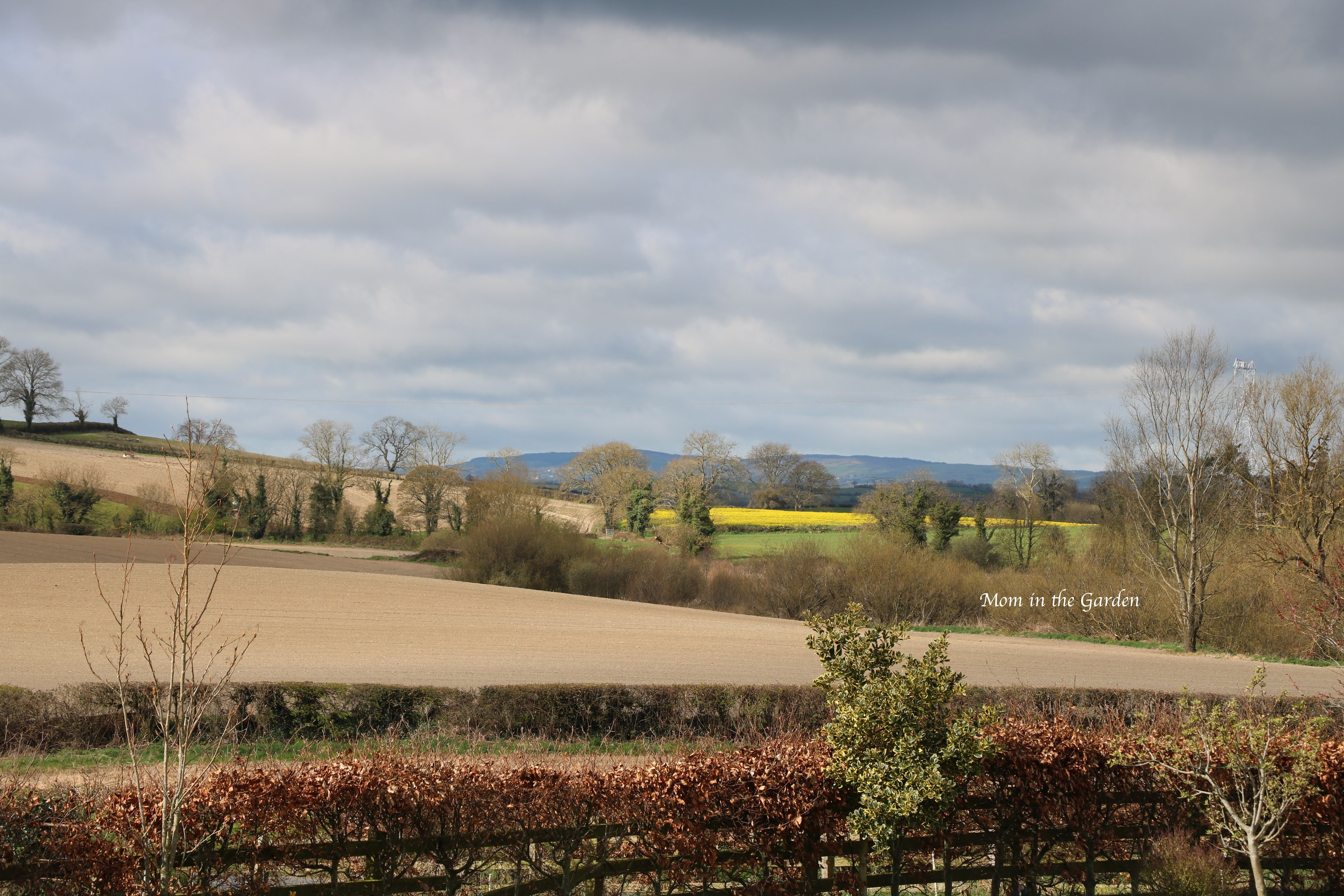 Surrounding fields in April