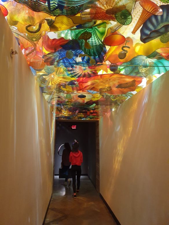 blown glass in the ceiling between show rooms (Chihuly Collection) Morean Arts Center
