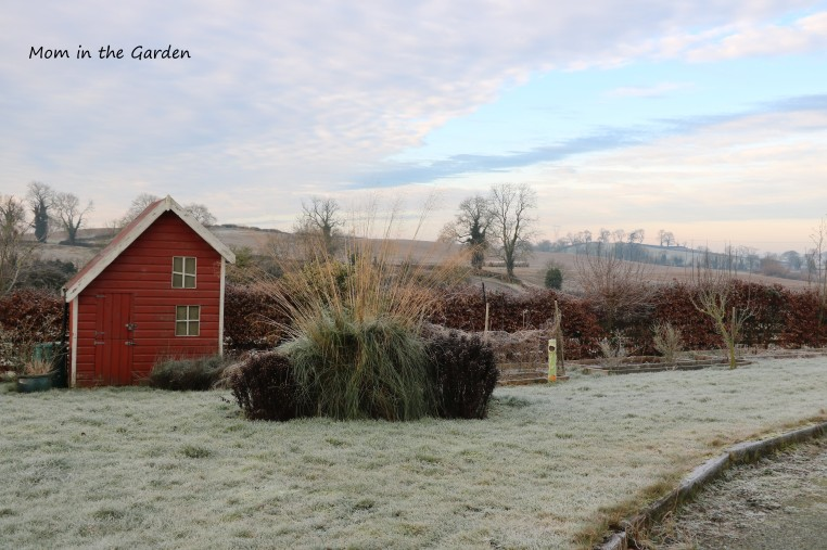 Frosty January view of playhouse
