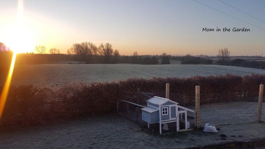 Frosty sunrise chickenhouse view