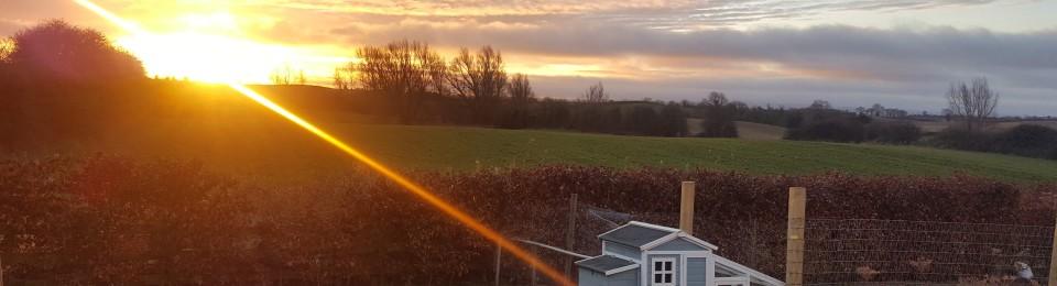 Sunrise chickenhouse view