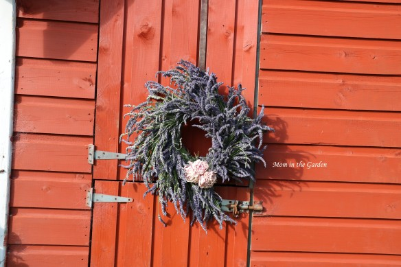 fresh lavender wreath