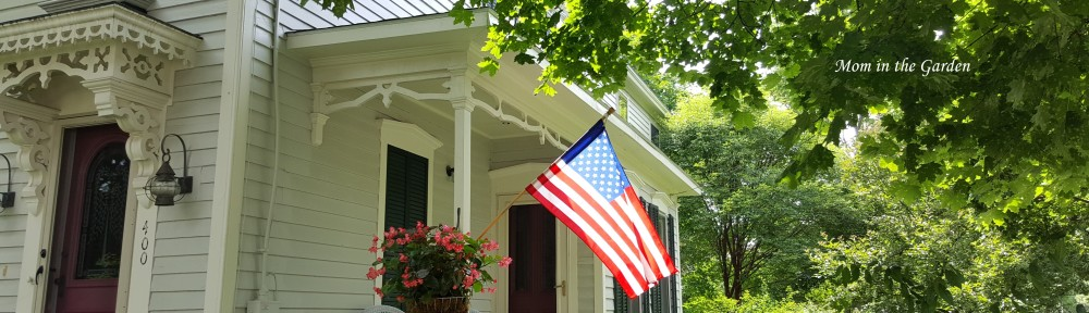 House with Flag in garden