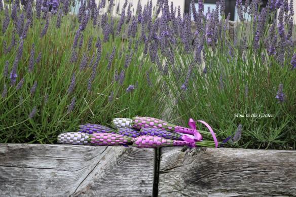 lavender wands in lavender