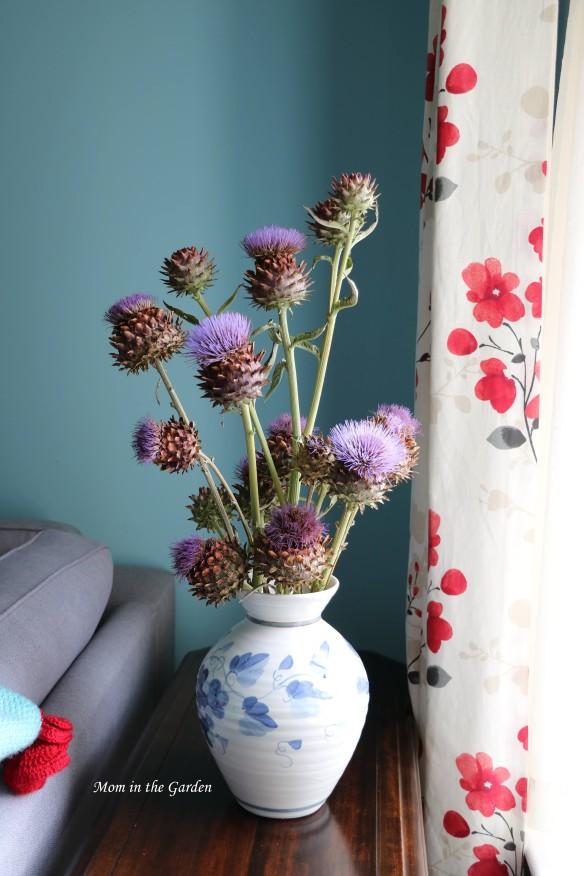 Globe artichokes in vase closeup