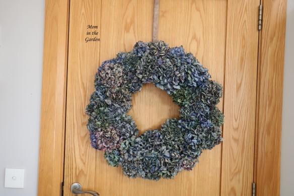 Hydrange wreath vs 1