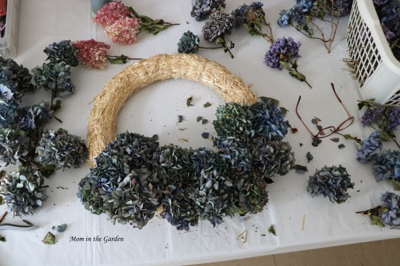 Hydrangea Wreath a bit done