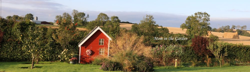 Sept 20 Fall View of Playhouse and fields