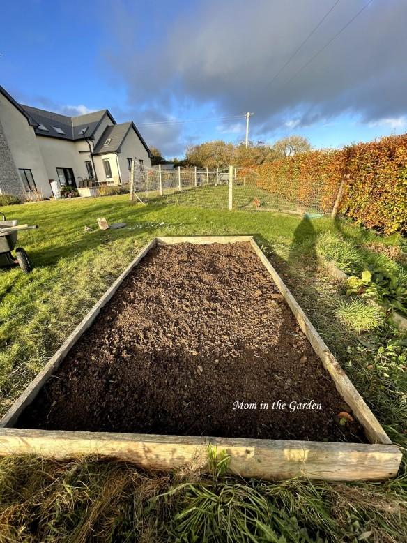 Garlic bed post planting