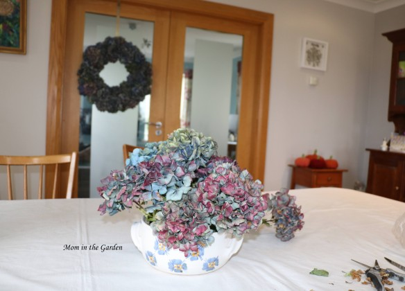 hydrangea arrangement in progress