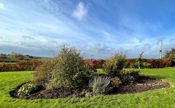 full view of the Rainbow garden
