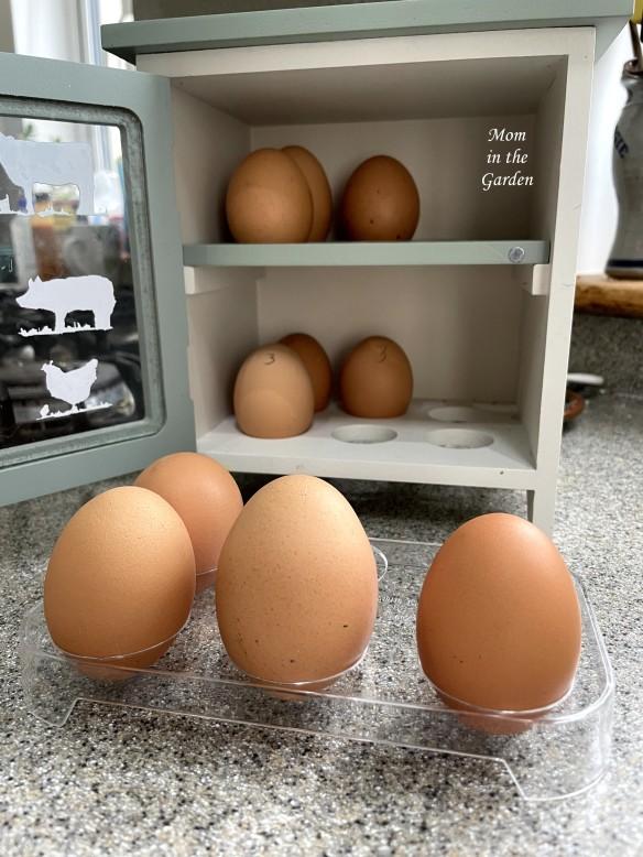 egghouse