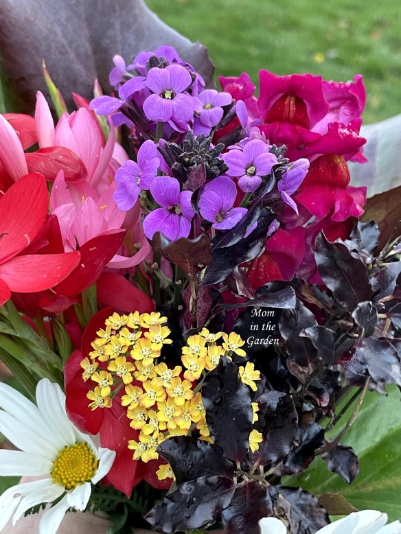 Flowers from the garden November 14 in hand