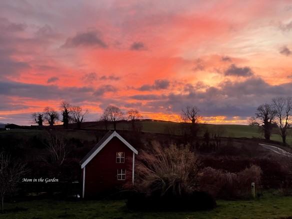 Pink sunset December 23